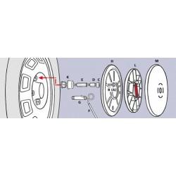 Kit adattatori per bulloni Spikes Spider - 17 mm